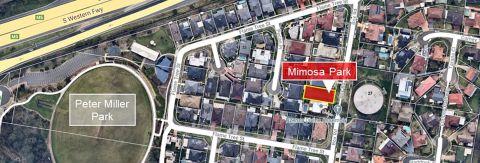 Mimosa Park Survey